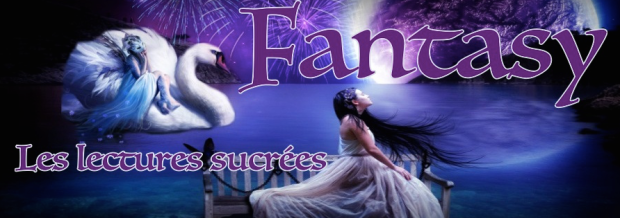 bannière fantasy