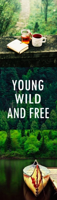 Wild 3